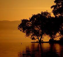 Dream on Lake by Yıldız UZEL