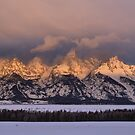 Winter Dawn - The Tetons by Stephen Vecchiotti