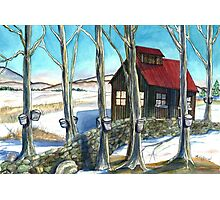Maple Sugaring in Vermont Photographic Print