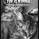 Banner Candidate, Top 10 (B&W Photography) by Nadya Johnson