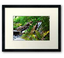 Resting by the Waterfall Framed Print