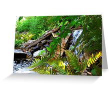 Resting by the Waterfall Greeting Card