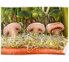 Fun Vegetable Landscape no.4 Poster