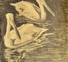 """Pelicans"" by Denis Gloudeman"