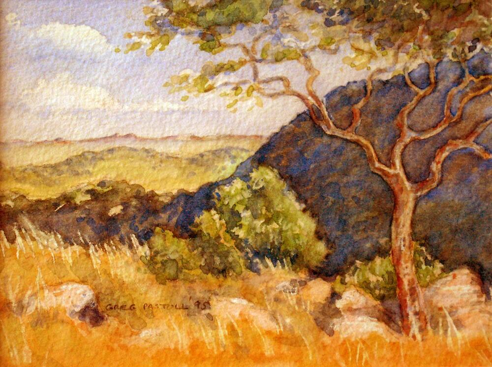 Rustenburg hillside: African bush by Gregory Pastoll