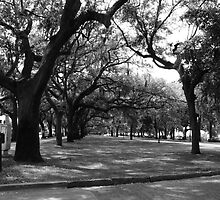 Emmet Park - Savannah, GA by Richard Fay