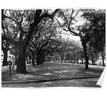 Emmet Park - Savannah, GA Poster