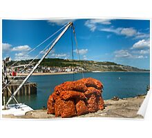 Catch Of The Day ~ Lyme Regis Harbour Poster