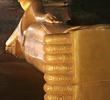 Golden Buddha by Katrina Freckleton