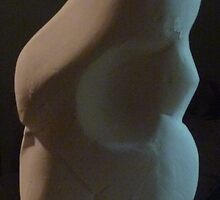 Homage to Venus de Willendorf....(Back view) by Redviolin
