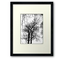 Tree Graphic Framed Print