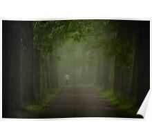 Through Green Woods Poster