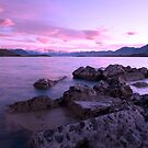 Purple Morning by Sheaney