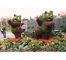 Posing Plants-Disneyland, Hong Kong Photographic Print