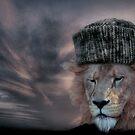 The Lion ran....  by luckylarue