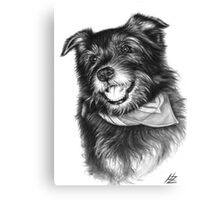 Laughing Dog Canvas Print