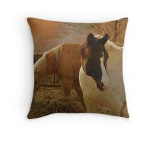 Out West..... Throw Pillow