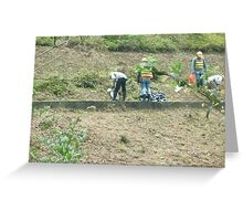 men cleaning wild growth from side of the mountain Greeting Card