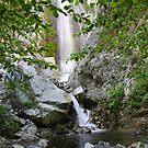 The Falls of Bonita by Troy Gooch