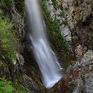 Bonita Falls by Troy Gooch