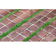 Tiled Grass  Photographic Print