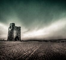 Facing the Storm by Neil Carey