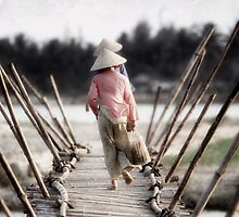 bamboo crossing by wellman