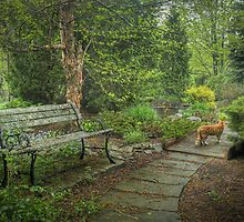 Garden in the Woods by Marilyn Cornwell