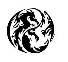 Dragon yin yang. Photographic Print