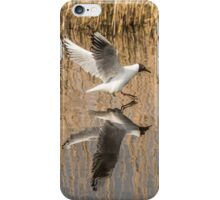 Black Headed Gull Mirror Image iPhone Case/Skin