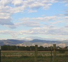 morning in Fort Collins, CO by Lisa Jones