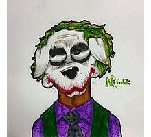 The Joker dog by WRTISTIK Photographic Print