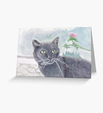 Spillo in the yard Greeting Card