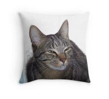 Is It Nap Time Yet? Throw Pillow