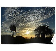 Snowy blue clouds with palm trees Poster