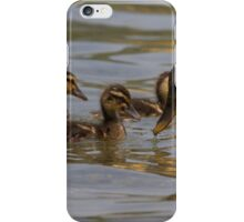 duck with ducklings on lake iPhone Case/Skin