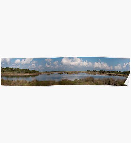 Blackpoint Wildlife Drive Panorama Poster