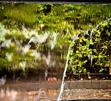 Water feature by Iceangel