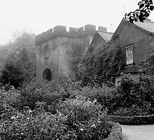 Little castle by Iceangel