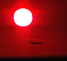 red at night airplane's delight by dedmanshootn