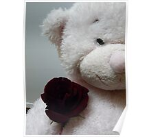 Teddy with Rose Poster
