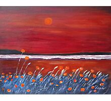 Poppy field with beach Photographic Print