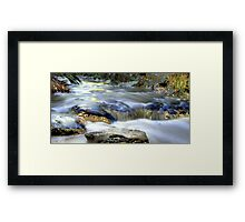 Precious (smooth) Framed Print