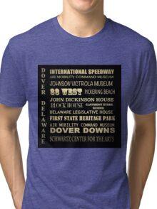 Dover Delaware Famous Landmarks Tri-blend T-Shirt