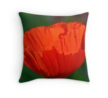 Orange Pop #2 Throw Pillow