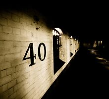40 by Richard Pitman