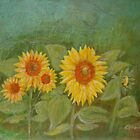 Sunflowers green by olivia-art