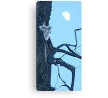 Cottonwood Knee Canvas Print