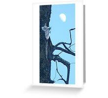 Cottonwood Knee Greeting Card