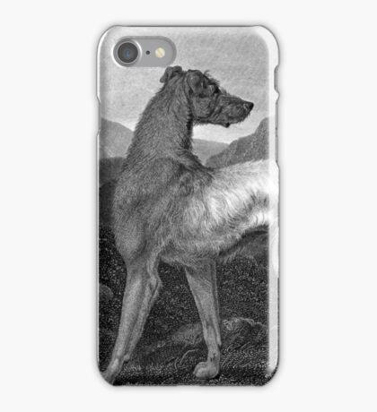 Irish Greyhound Dog iPhone Case/Skin